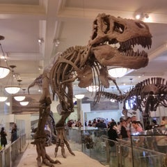Photo taken at American Museum of Natural History by Pavel K. on 8/20/2013