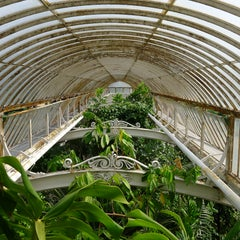 Photo taken at Palm House by John G. on 7/21/2013