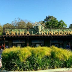 Photo taken at Disney's Animal Kingdom by Kevin E. on 3/29/2013