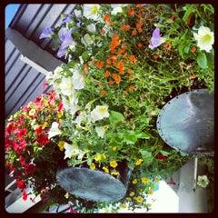 Photo taken at New Seasons Market by Melissa L. on 6/15/2012
