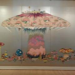 Photo taken at San Francisco Museum of Modern Art by David D. on 1/27/2013
