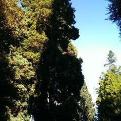 Photo taken at Leschi Park by Matt R. on 9/7/2013