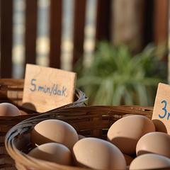 4/10/2014 tarihinde Yonca Lodgeziyaretçi tarafından Yonca Lodge'de çekilen fotoğraf