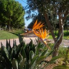 "Photo taken at Parc de ""La Canaleta"" by Cova Morales (. on 10/15/2012"