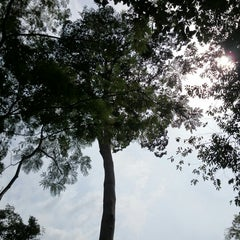 Photo taken at Waterfall, Forest Research Institute of Malaysia by Kitten H. on 1/12/2014