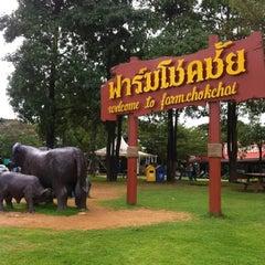 Photo taken at ฟาร์มโชคชัย (Farm Chokchai) by DaDa M. on 12/23/2012
