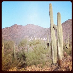 Photo taken at Usery Mountain Regional Park by Preston M. on 10/15/2012