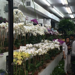 Photo taken at Flower District by Nancy A. on 4/18/2015