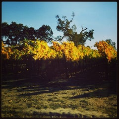 Photo taken at Balletto Vineyards & Winery by clinopstk N. on 11/9/2013
