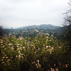 Photo taken at Coldwater Canyon Park by Mandy R. on 5/24/2014