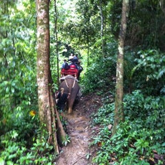 Photo taken at Tree Top Jungle Hut by Filippo F. on 11/28/2012