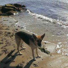 Photo taken at Sea Street Beach by Loring H. on 11/9/2013
