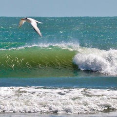 Photo taken at City of Delray Beach by Crist J. on 3/24/2013