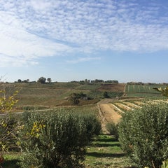 Foto scattata a La Foresteria Planeta da Emanuele F. il 11/22/2014