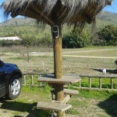 Photo taken at Area Dulces de la Ligua by Francisco H. on 7/16/2013