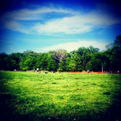 Photo taken at Overton Park by Taylor C. on 4/21/2013