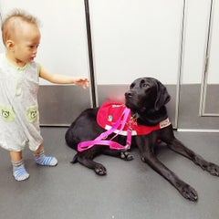 Photo taken at MTR Kowloon Bay Station 九龍灣站 by Benjamin T. on 6/20/2015