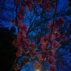 Photo taken at Hanover Avenue by Deepthi P. on 4/14/2014