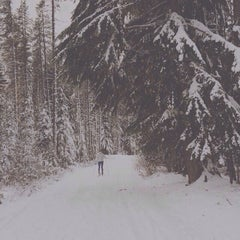 Photo taken at Mt Hood National Forest by juleerat p. on 12/4/2014