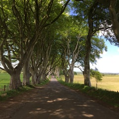 Photo taken at The Dark Hedges by Janice H. on 6/7/2015