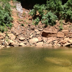 Photo taken at Emerald Pool Trail by Thierry M. on 6/17/2013