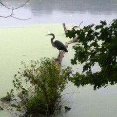 Photo taken at Radnor Lake State Park by Michael B. on 9/15/2012