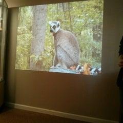Photo taken at Duke Lemur Center by Meg N. on 10/20/2014