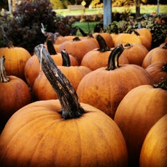 Photo taken at Adams Apple Orchard and Farm Market by Casey P. on 10/6/2012