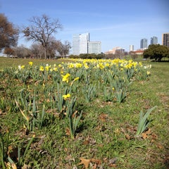 Photo taken at Trinity River Park by Sue G. on 3/16/2015