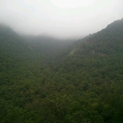 Photo taken at Parque Nacional La Campana by Rene M. on 1/23/2013