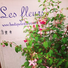 Photo taken at Les Fleurs by Lucie D. on 6/17/2015