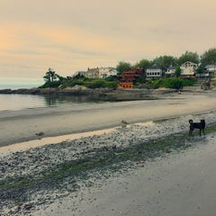 Photo taken at Gonzales Beach by Sara P. on 5/17/2015