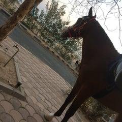Photo taken at Nuwai9ib 298 by ahmad a. on 1/16/2015