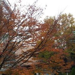 Photo taken at 서울대학교 반도체공동연구소 설계연구관 by pchama [⊙_⊙] on 10/28/2012