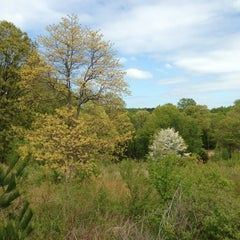 Photo taken at Wissahickon Valley Park by Terry B. on 5/6/2013