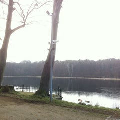Photo taken at Jagdschloss Grunewald by Andreas B. on 1/18/2014