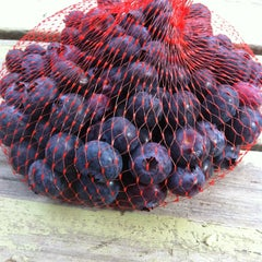 Photo taken at Tuckerberry Hill Blueberry Farm by Rick K. on 4/7/2013