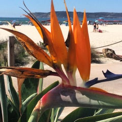 Photo taken at City of San Diego by Renee F. on 10/11/2015