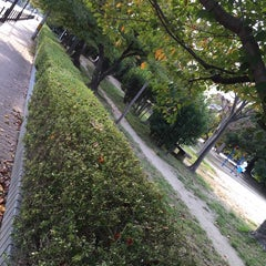Photo taken at 大曽公園 大曽公園北 by YAS T. on 10/26/2014