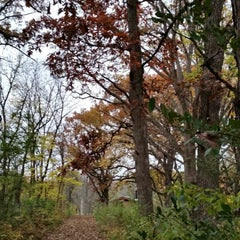 Photo taken at Leroy Oakes Forest Preserve by Wendy C. on 10/17/2014