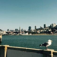 Photo taken at Municipal Pier by Janina L. on 7/26/2015