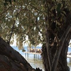 Photo taken at Pinar Otel beach club by Didem D. on 8/30/2015