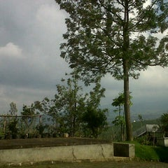 Photo taken at Ciseureuh Tea Plantation by Icup Supriadi S. on 4/18/2012