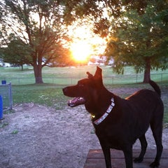 Photo taken at Medina Dog Park by Jennifer on 8/12/2012