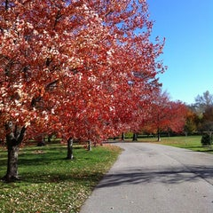 Photo taken at Tower Grove Park by Morgan G. on 11/10/2012