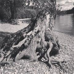 Photo taken at Hidden Falls Regional Park by Paul C. on 7/28/2013