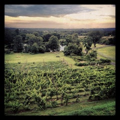 Photo taken at The Vineyard and Brewery at Hershey by Matthew W. on 6/28/2013