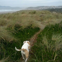 Photo taken at Ocean Beach by cooper b. on 3/2/2013