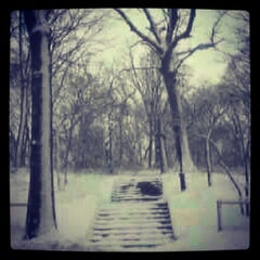 Photo taken at Forest Park by Greg D. on 2/9/2013