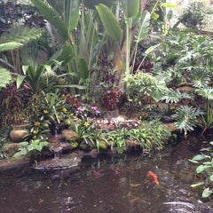 Photo taken at Marie Selby Botanical Gardens by Jim E. on 1/17/2013